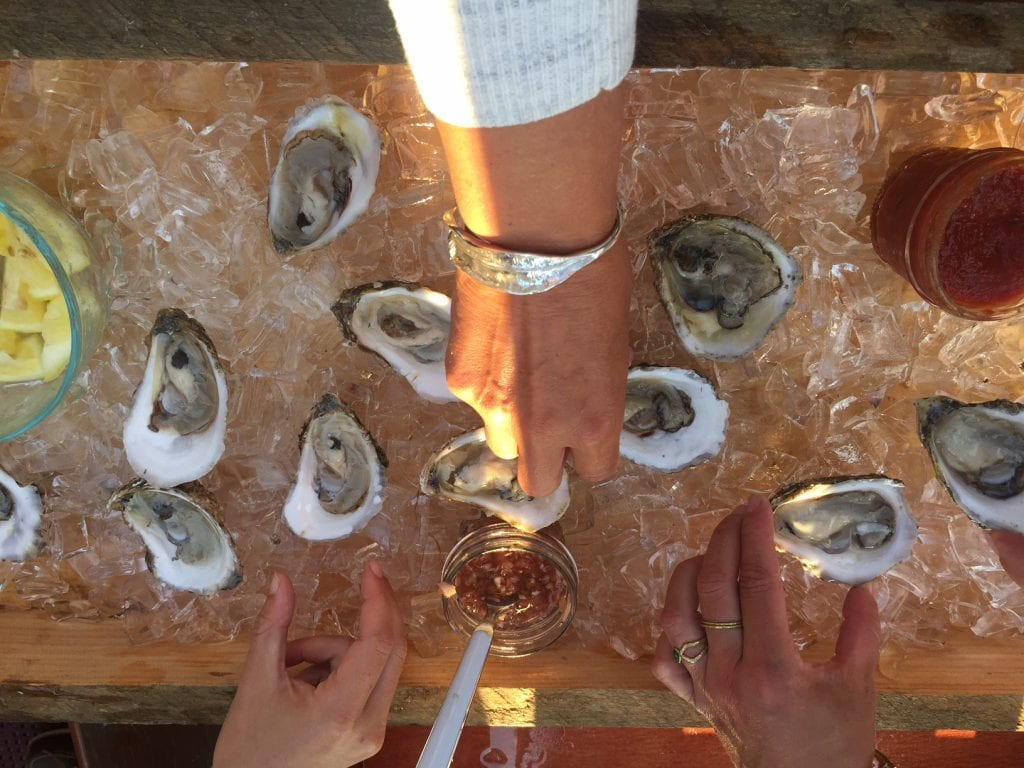 Cottage City Oyster Served Fresh From the Farm On Martha's Vineayrd