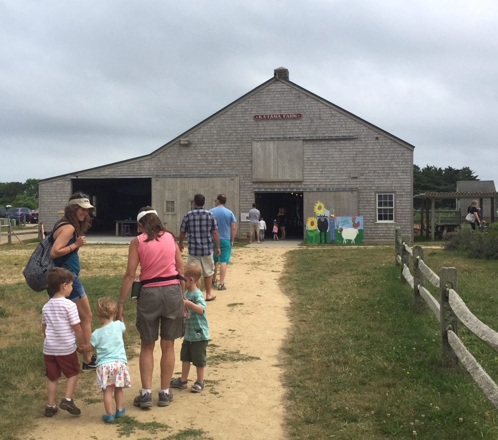 The Farm Institute Martha's Vineyard Meals In The Meadows Fundraiser Is All New
