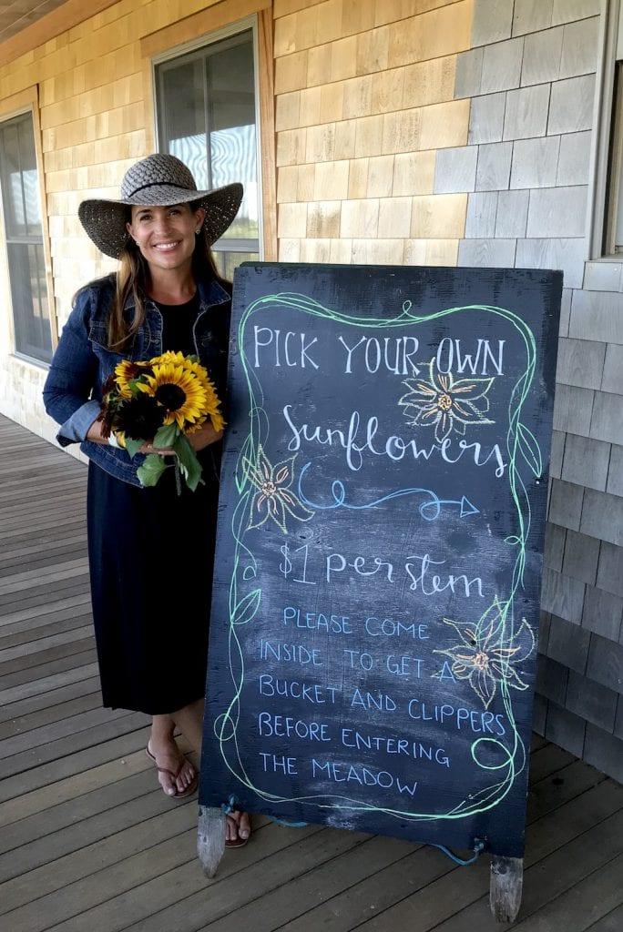 The FARM Institute Sunflower Meadow Summer & Fall Fun on Martha's Vineyard