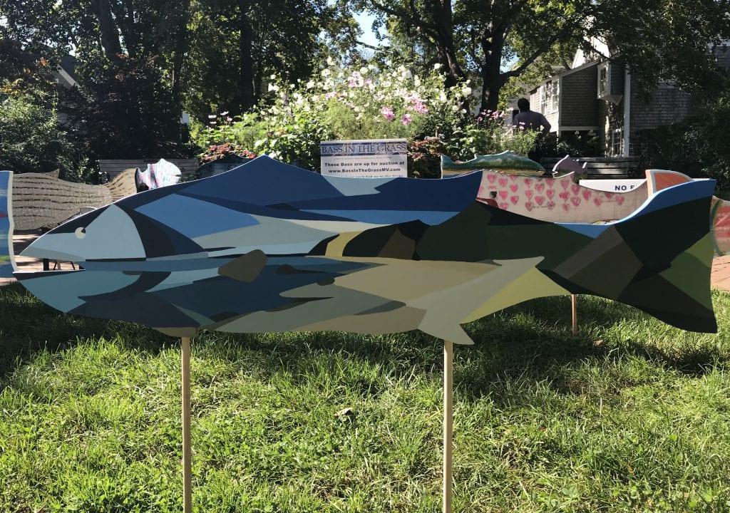 Bass In The Grass Fundraiser Is Back Martha's Vineyard Striped Bass & Bluefish Derby