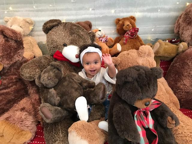 Martha's Vineyard Teddy Bear Suite Is Open At 29 Winter Street Edgartown MA Martha's Vineyard - The New Point B Realty Rental Office On Loan And Magically Transformed
