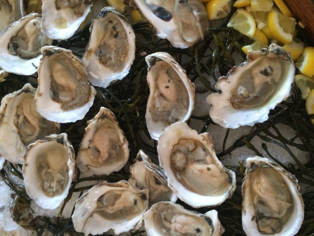 West Tisbury Farmer's Market Moves To Ag Hall - Cottage City Oysters Will Be Available At The Market