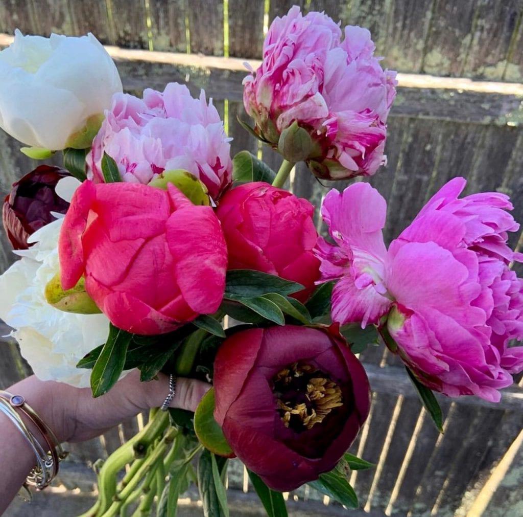 We Love MV Fresh Flowers At Juniper In Edgartown Local Artists & Purveyors On Martha's Vineyard