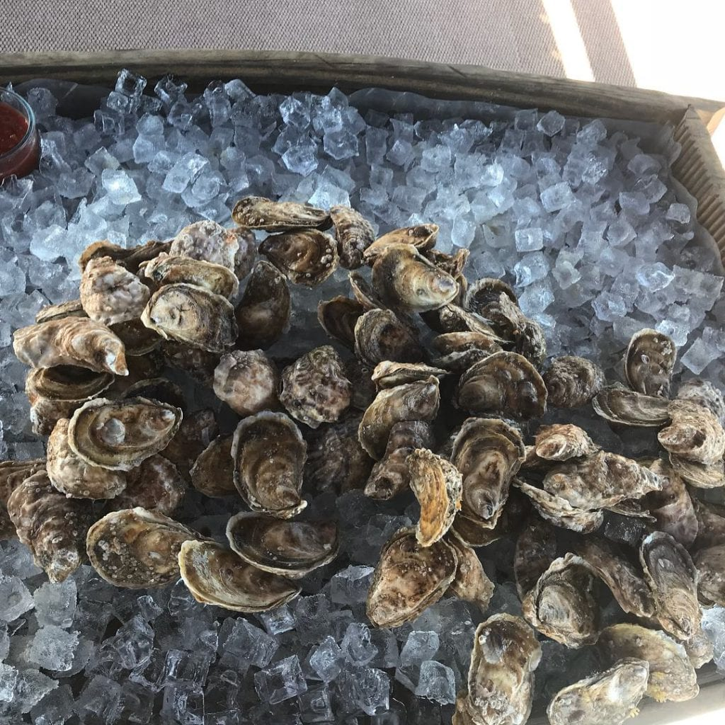 SHOP LOCAL MV This Holiday Season - Cottage City Oysters | Oak Bluffs