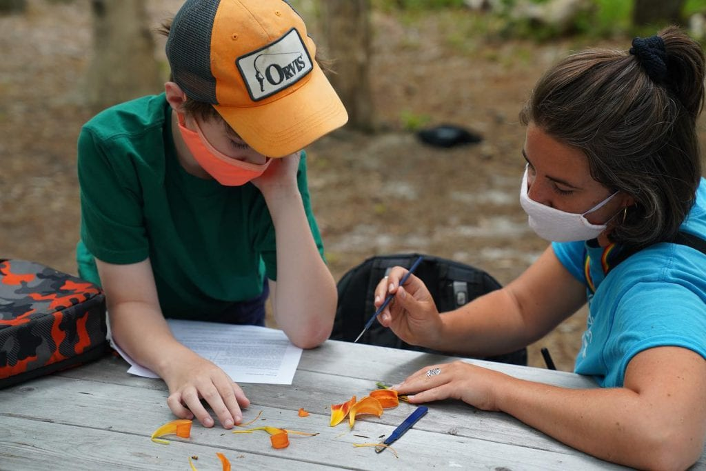 WE LOVE MV: Summer Camps On Martha's Vineyard Summer 2021 - Fern & Feather Nature Day Camp at Felix Neck