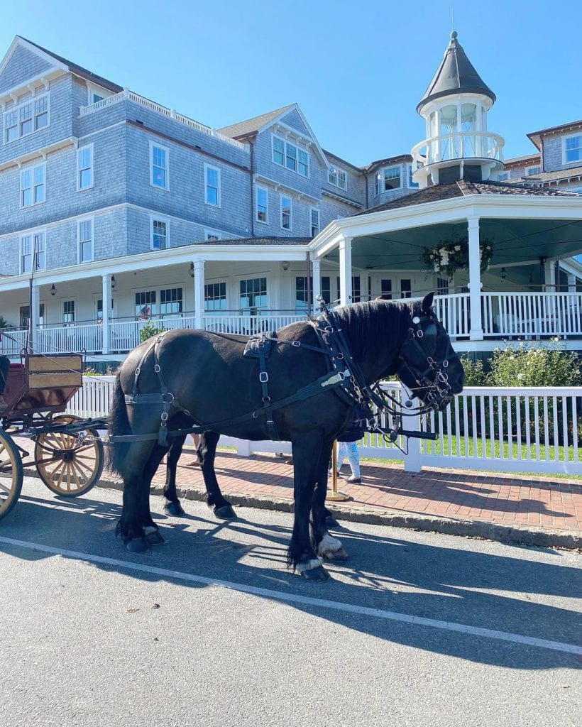 Horse-drawn Carriage Rides Pink and Green Weekend Edgartown Martha's Vineyard  Harbor View Hotel