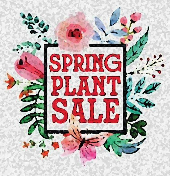 Edgartown Free Library  Plant Sale Pink and Green Weekend Edgartown Martha's Vineyard