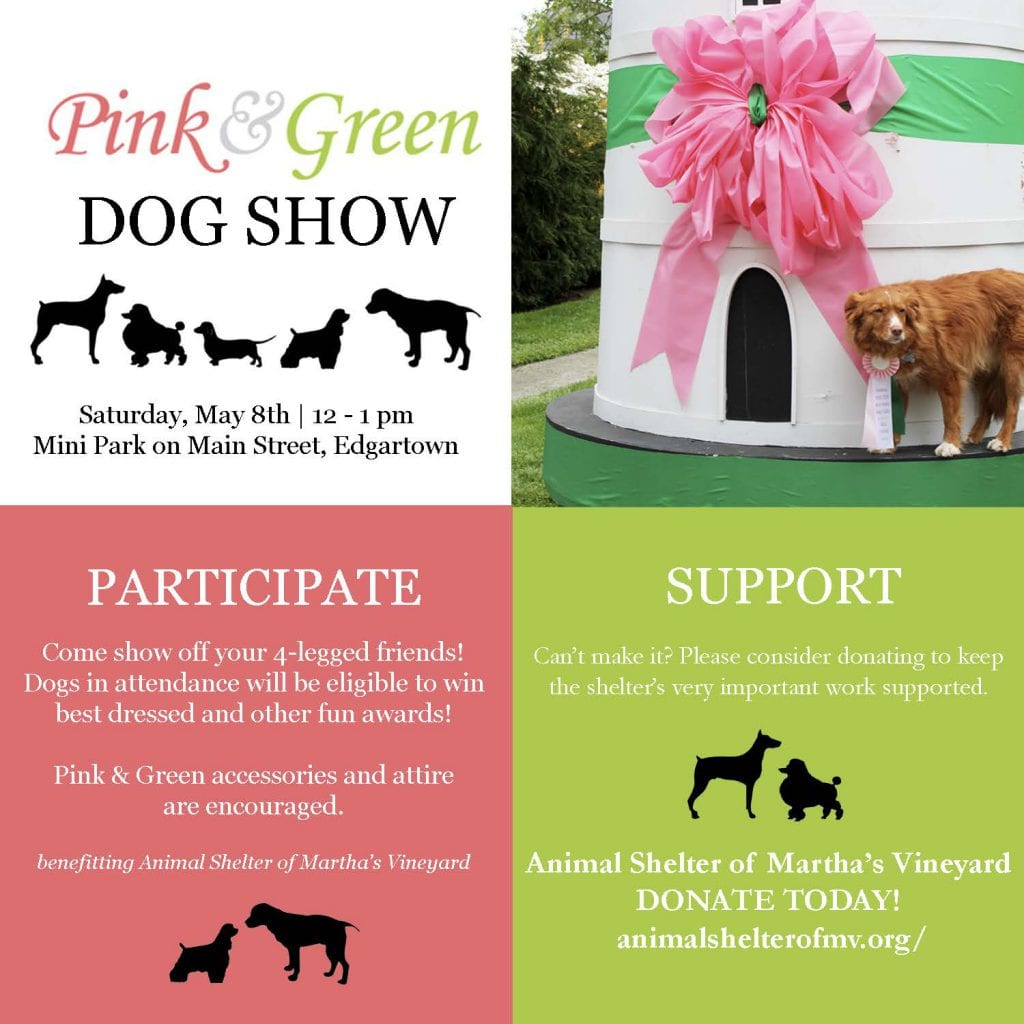 Pink and Green Dog Show  Martha's Vineyard Animal Shelter of Martha's Vineyard