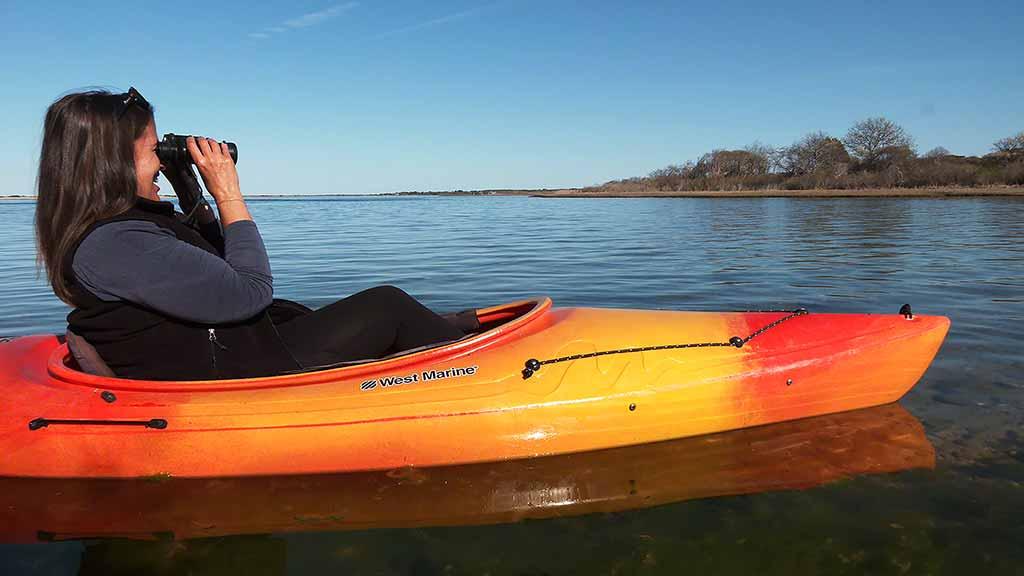 Martha's Vineyard Bucket List: Exploring Felix Neck Wildlife Sanctuary - Felix Neck by Water - Kayak Tour Discovering Sengekontacket Pond