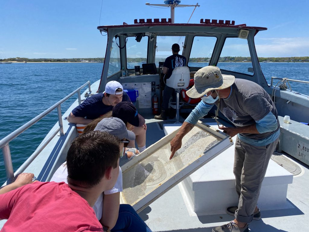 Cottage City Oysters Farm Tours Oyster Farms Martha's Vineyard  Point B Realty Oak Bluffs