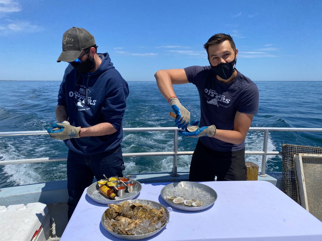 Experience Cottage City Oyster Farm Tours On Martha's Vineyard - Fresh Oyster Shucked On Oyster Tour