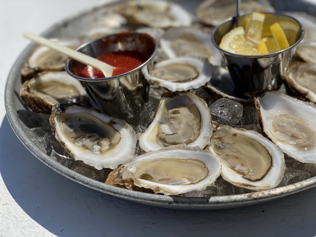 Cottage City Oysters Farm Tours Cottage City Oysters  Oyster Farms Martha's Vineyard  Point B Realty Oak Bluffs  Support Farmers  Eat Local