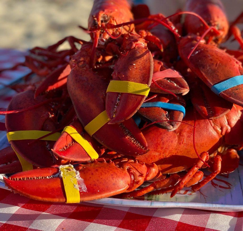 Martha's Vineyard Bucket List: Vineyard Clambake Lobsters Bill Smith's Famous Clambake  Martha's Vineyard Summer Vineyard Bucket List