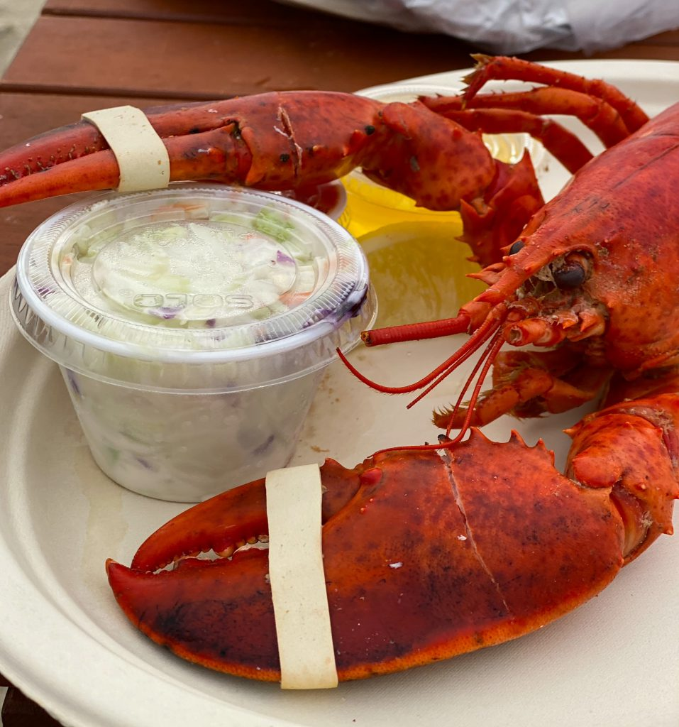 Lobsters Sunset Dinner Menemsha Fish Market Menemsha Martha's Vineyard Summer Vineyard Bucket List
